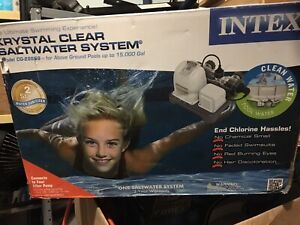 Intex Saltwater System and Filter Pump