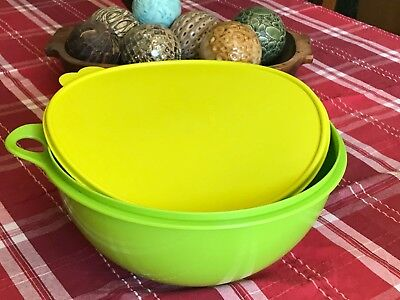 Thatsa Food Savers & Storage Containers Bowl 32-Cup • Tupperware Super Large