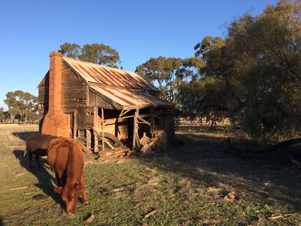 Wanted: Wanted Old Farm Country Timber Brick Houses FREE Removal Demolition