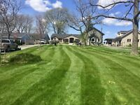 Spring Clean-Ups and Lawn Aerations