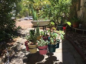 Vintage Retro Pot-plant Stand Only