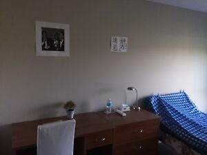 Conestoga college area student housing for rent