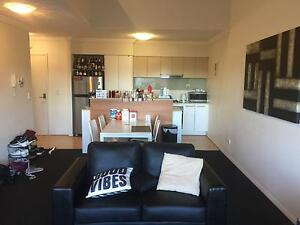Room for Rent in Wooloongabba from June 6. Woolloongabba Brisbane South West Preview