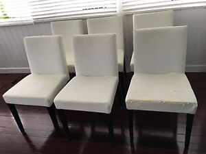 Carla Dining Chair (6 chairs) Windsor Brisbane North East Preview