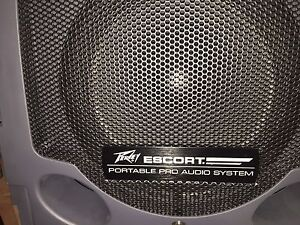 Portable pro audio system Roleystone Armadale Area Preview