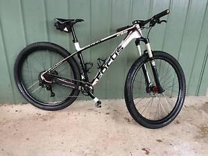 Focus Raven 29R all Carbon Hardtail Mountain Race Bike MTB 29er Launceston Launceston Area Preview