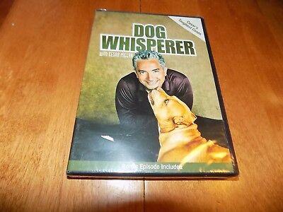 DOG WHISPERER With Cesar Millan Cesar's Toughest Cases TV Dogs Show DVD NEW