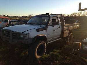 3 HILUX'S FOR SALE Cressy Northern Midlands Preview