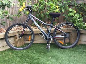 Nitro 24 inch bike