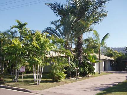 ***REDUCED!!! Clean Tidy Maisonette Attractive Landscaped Garden Kirwan Townsville Surrounds Preview