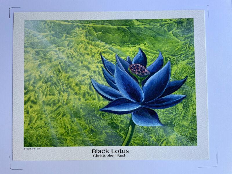 "Black Lotus - MTG High Quality Print by Christopher Rush MTG 8""x10"" Authorized"