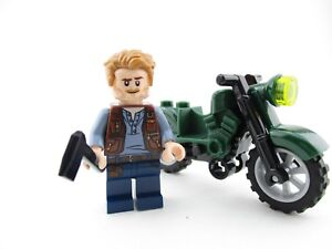 Looking for Jurassic World Lego figure