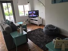 Double bedroom for rent in coogee $370 a week Randwick Eastern Suburbs Preview
