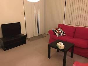 Vic Park Great Location Single Room For Rent! Victoria Park Victoria Park Area Preview
