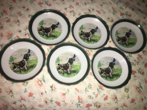 "6 Regency Bone China Coaster Dish Cocker Spaniel Bird Dog Green Gold Rim 3 3/4"""