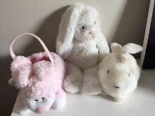 3 bunnies Hamilton Newcastle Area Preview