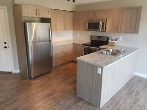 Brand New 3 Bed 2.5 Bath Townhouse with Garage in Sylvan Lake