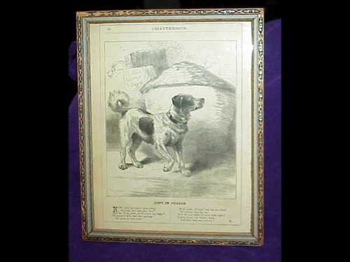 vintage 1878 framed JACK RUSSELL TERRIER DOG Chatterbox print - Harrison Weir