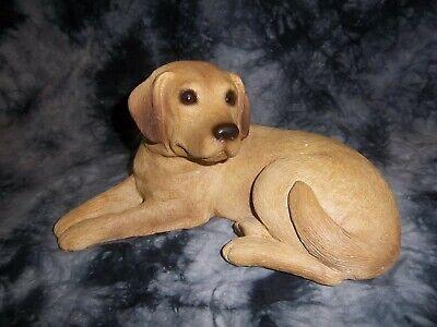 labrador retriever puppies for sale  Minneapolis