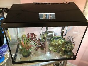 20 gallon Fish tank