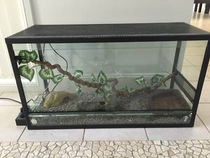 Reptile Snake Enclosure Starter Package - Tank Cage Beginner Pack Mount Annan Camden Area Preview