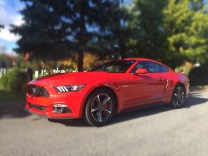 Ford Mustang 2016 ***financement disponible***