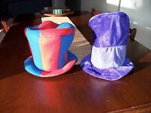 Crazy Hats Taree Greater Taree Area Preview