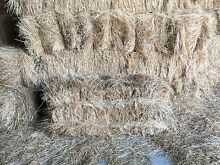 New Season Square Hay Bales Pakenham Upper Cardinia Area Preview