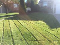 Lawn Care at an Affordable Price!