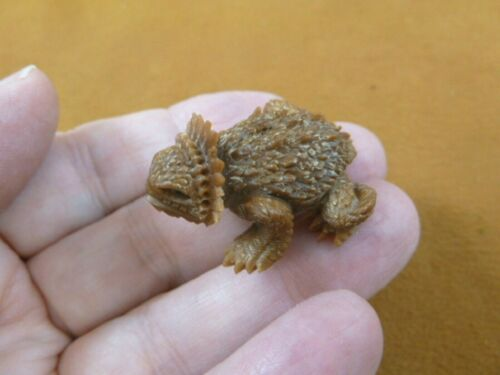 tb-liz-58 Horned Lizard Tagua NUT palm figurine Bali detailed carving horny toad