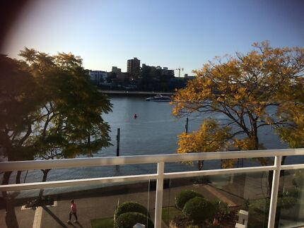 Apartment share Kangaroo Point Kangaroo Point Brisbane South East Preview