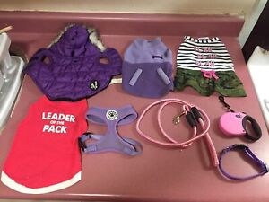 Girl small dog clothing lot.