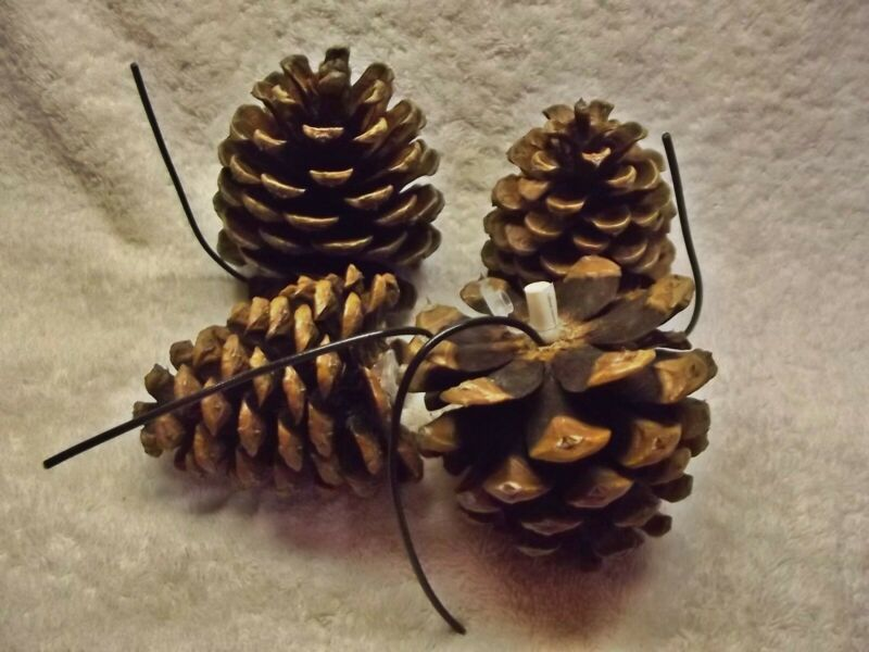 (4) Pine Cone Geocache Containers - Nature