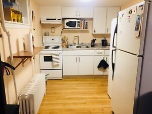 1 Bedroom South End Apartment Sublet