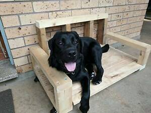 Reclaimed Timber Dog Bed Balmain Leichhardt Area Preview