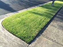 Rick's Garden Maintenance - Lawn Mowing / Hedge Trimming Fawkner Moreland Area Preview