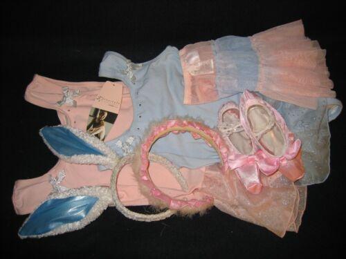Danskin Freestyle Girls SM Ballet Skirt Leotard Slippers Dance Costumes Lot of 6