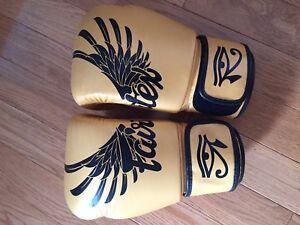 Fairtex special edition gloves