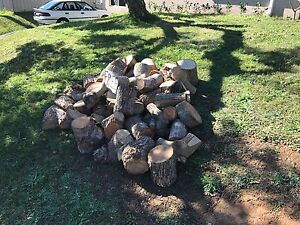 Firewood Wyoming Gosford Area Preview