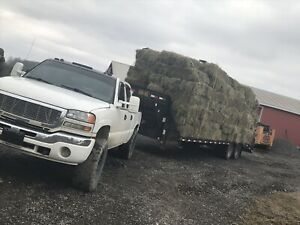 2000 small square bales of high quality hay for sale