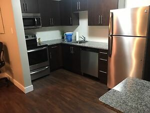 1 Bedroom Apartment- Great Deal