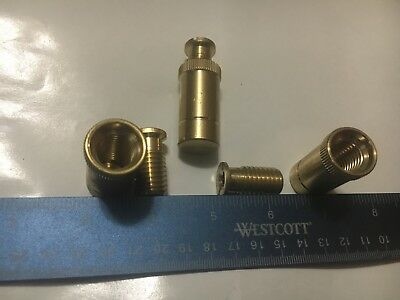 Swimming Pool Safety Cover Brass Anchors by GLI/Vynall