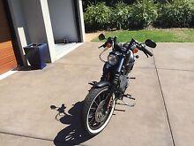 Harley Davidson 883 Iron Toowoomba 4350 Toowoomba City Preview