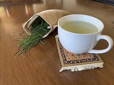 Pine Needle Tea 80g Freshly Picked Immediate Shipping Healthy Herbal Tea