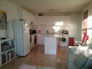 1 Bedroom for rent in 2 bedrooms unit Mosman Park Cottesloe Area Preview