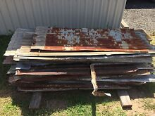 Rustic Iron sheet 80+ years old Pitt Town Hawkesbury Area Preview