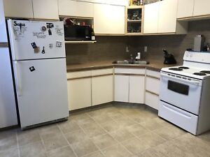 Pet friendly suite by beach and downtown