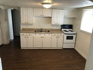 1 bedroom updated apartment for rent May 1st
