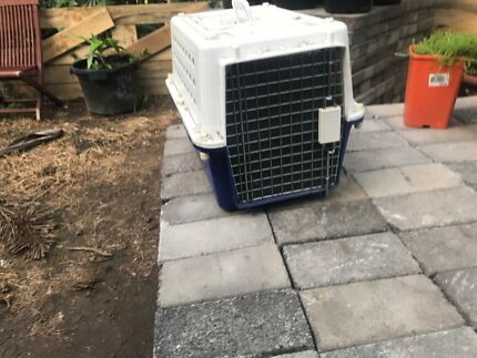 Cat or small dog transport cage