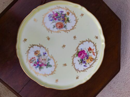 Vintage Limoges Collectible Painted Plate